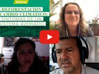 Disponible la transmisión del webinar sobre deforestación y cambio climático