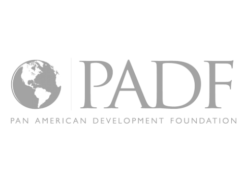 Panamerican Development Foundation (PADF)