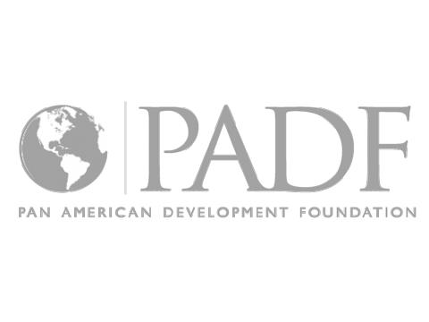 Panamerican Development Foundation (PADF)